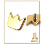 Embout Titane F136 Couronne PVD Gold