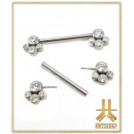 Barbell Téton Titane F136 Threadless Cabochons Cluster 4 Strass